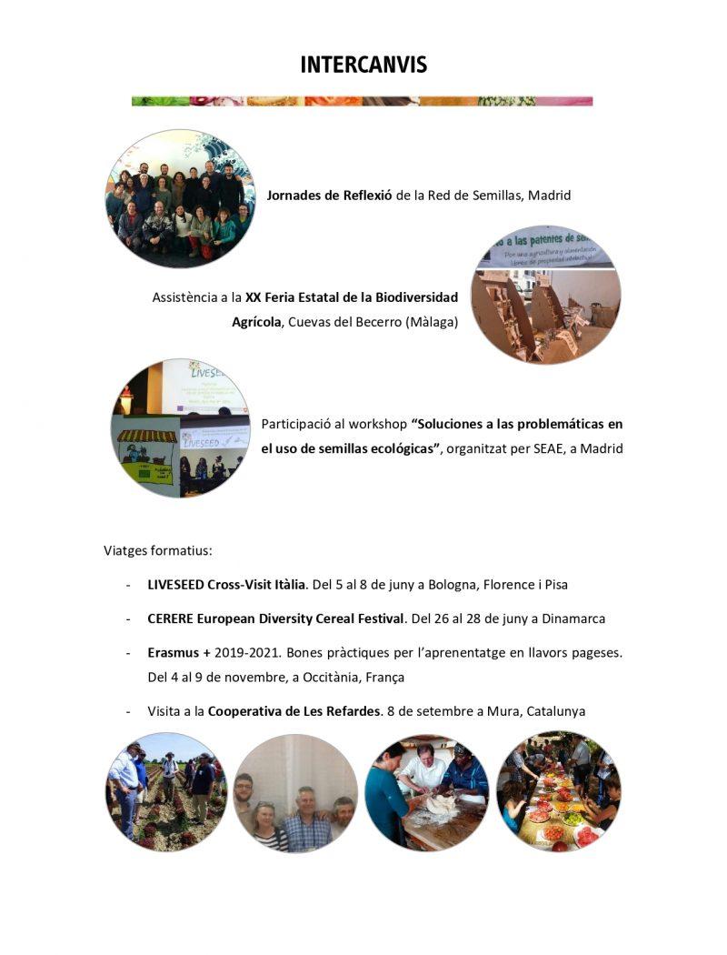 Memòria anual AVL 2019_6