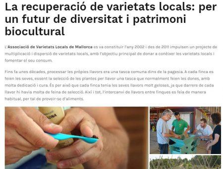 Article sobre la recuperació de les varietats locals (ICTIB)