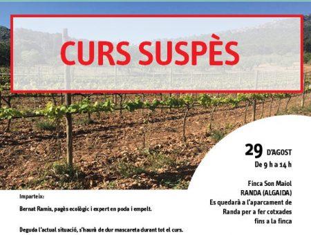 """Curs SUSPÈS """"Empelt de vinya de varietats locals"""""""
