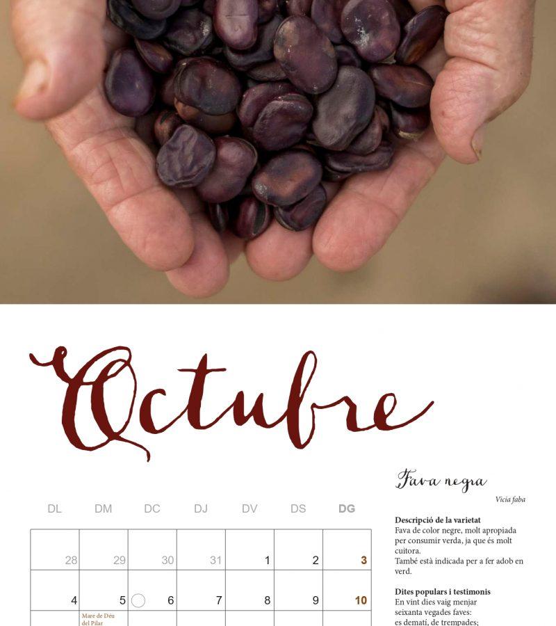 Maqueta Calendari 2021 FINAL comprimit-12_page-0001