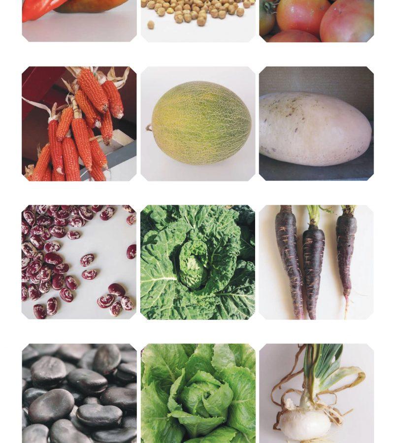 Maqueta Calendari 2021 FINAL comprimit-16_page-0001