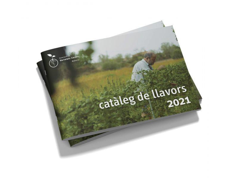 Simulacio_Portada_AVL_2021