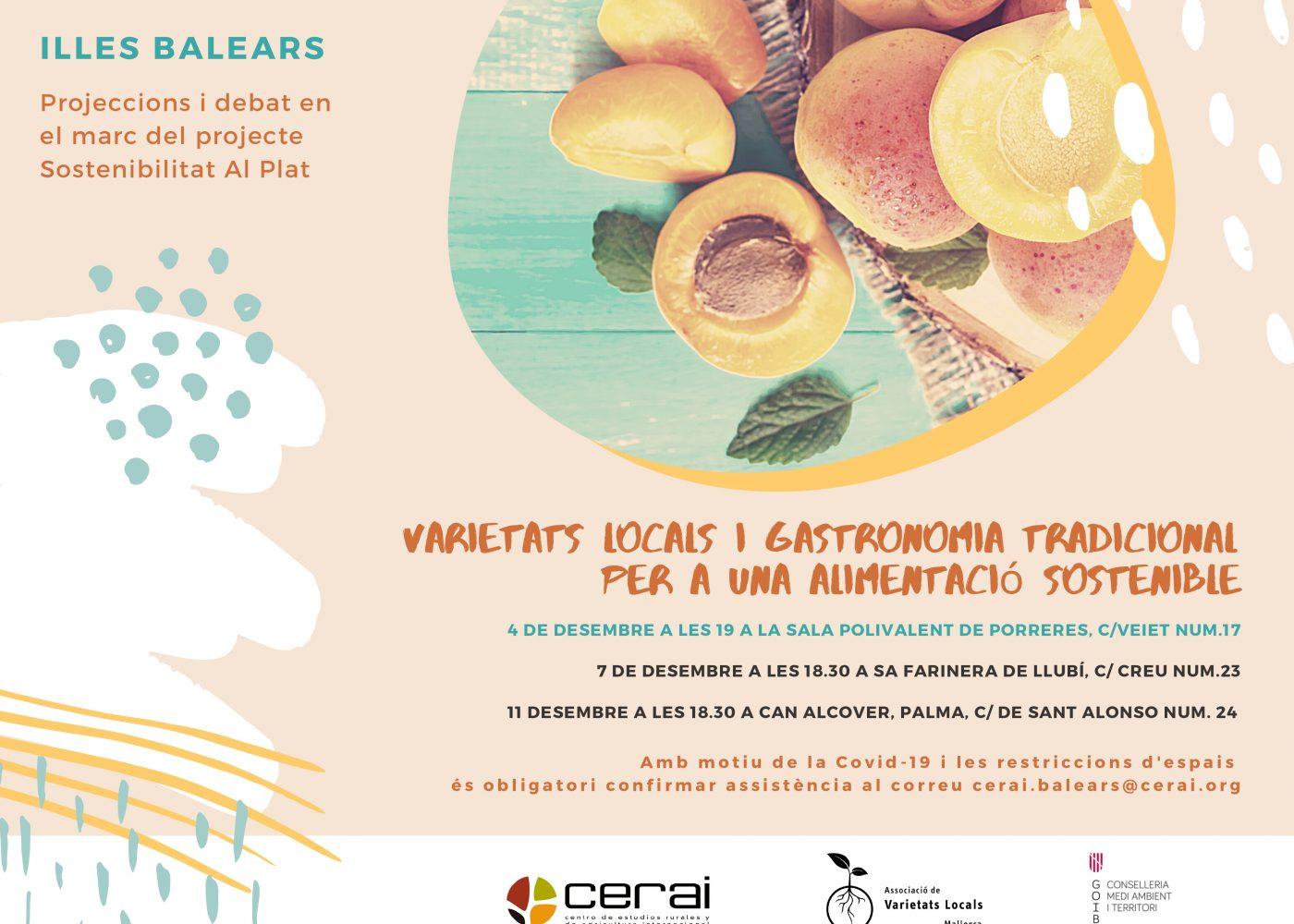 cartell presentacions vídeos CERAI I AVL 2020_page-0001
