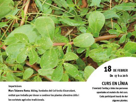 """Curs en línia """"Varietats locals de plantes silvestres comestibles"""""""
