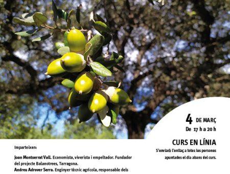 """Curs en línia """"La prospecció d'aglans dolços a Mallorca"""""""
