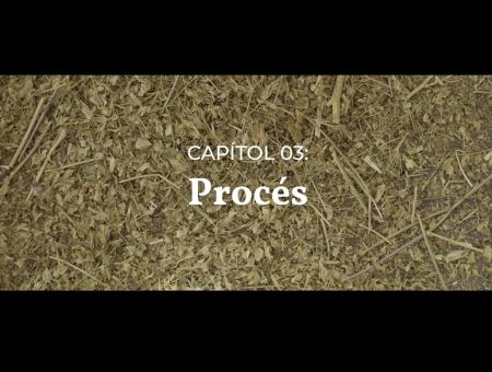 Vídeos divulgació. Capítol 03: Procés