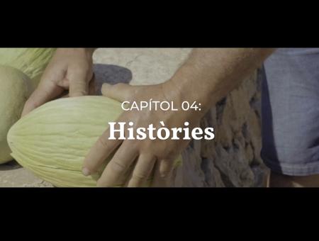 Vídeos divulgació. Capítol 04: Històries