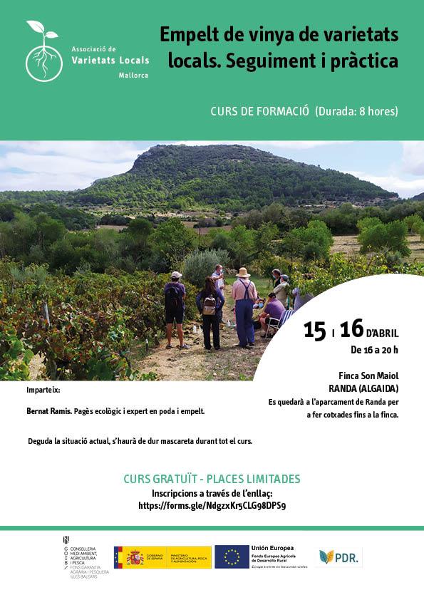 Empelt de vinya de varietats locals. Seguiment i pràctica