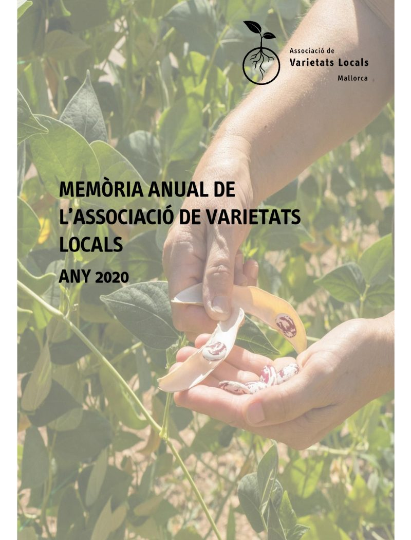 Memòria anual AVL 2020 per difusió_pages-to-jpg-0001
