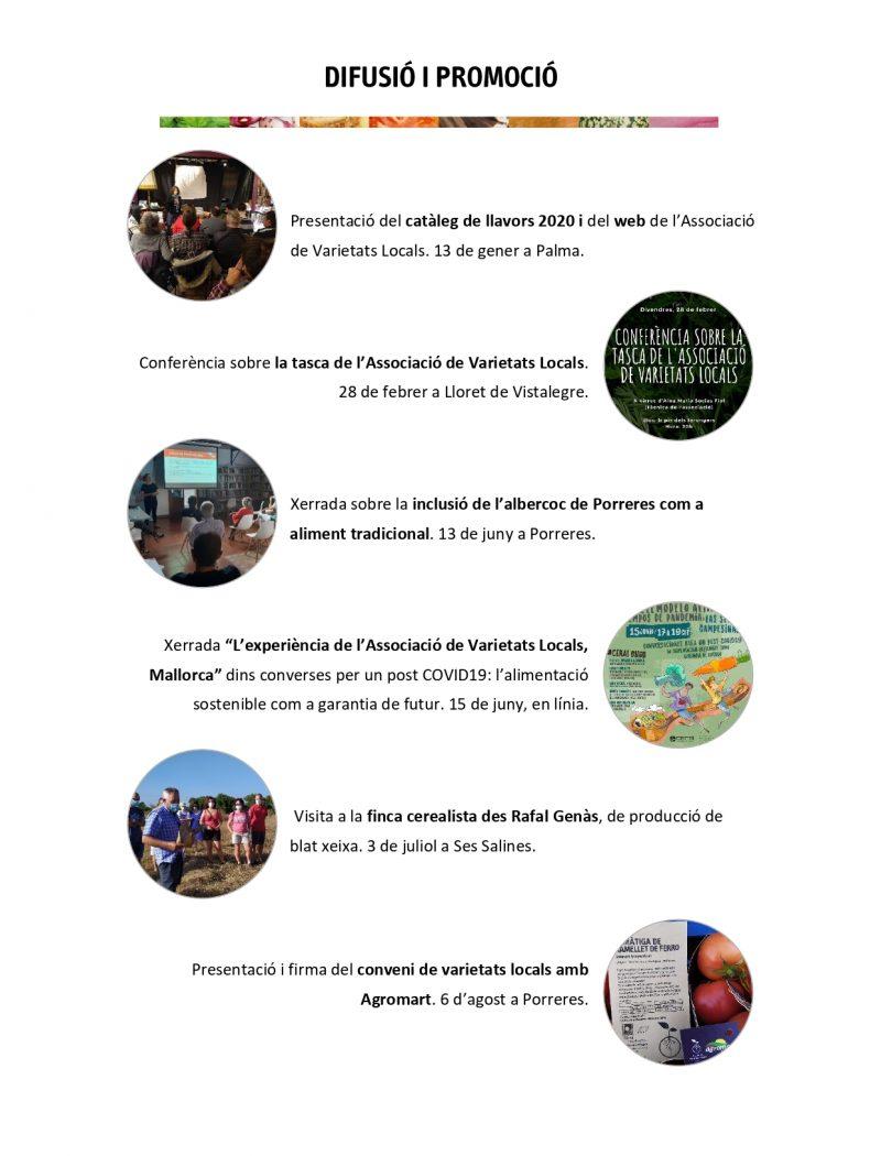 Memòria anual AVL 2020 per difusió_pages-to-jpg-0006