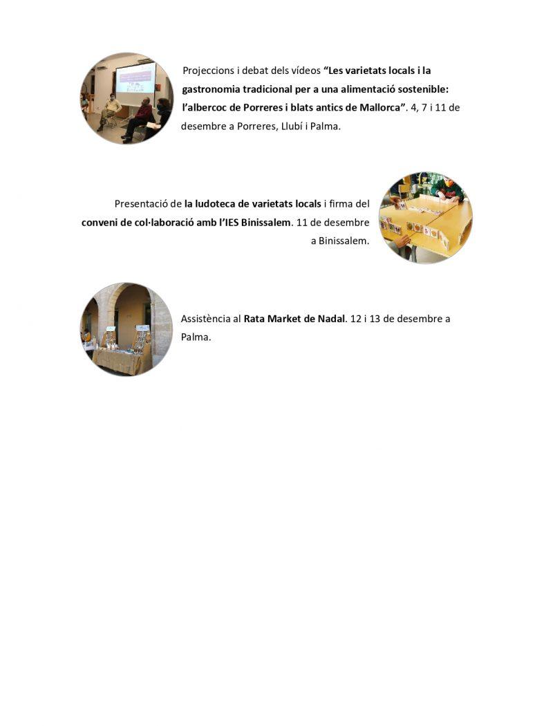 Memòria anual AVL 2020 per difusió_pages-to-jpg-0007