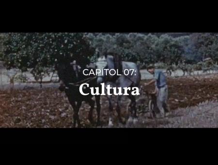 Vídeos divulgació. Capítol 07: Cultura