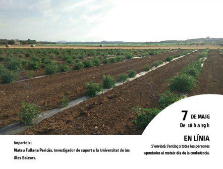 """Conferència """"Diversitat de les varietats locals de tomàtiga de la conca mediterrània"""""""