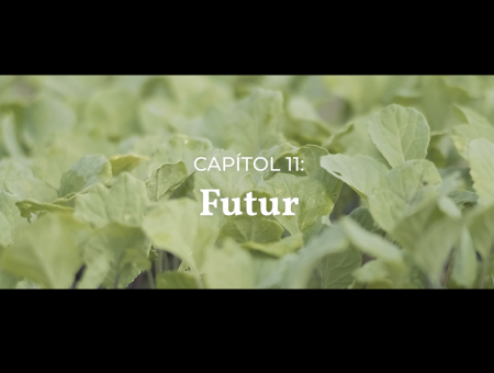 Vídeos divulgació. Capítol 11: Futur