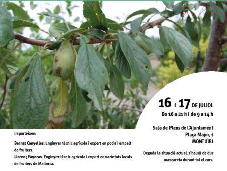 """Curs """"Els fruiters de varietats locals. Característiques, cultiu i multiplicació"""""""
