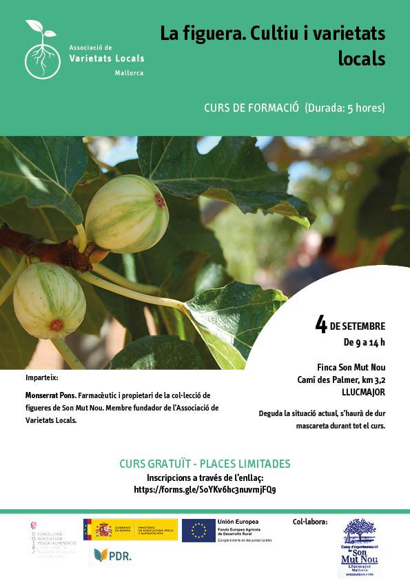 La figuera. Cultiu i varietats locals