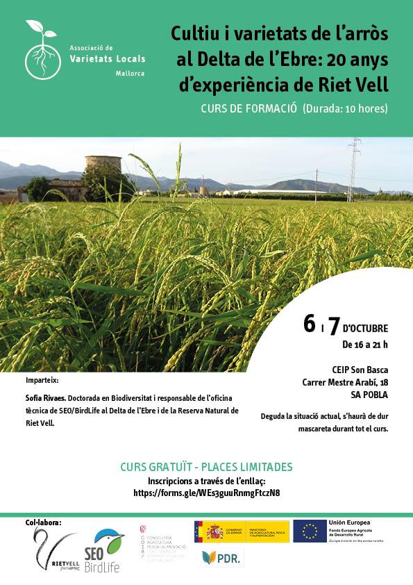 Cultiu i varietats de l'arròs al Delta de l'Ebre