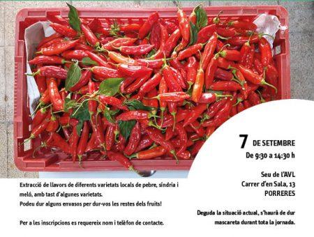 Jornades d'extracció de llavors d'hortalissa de varietats locals